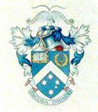 Lyrebird crest