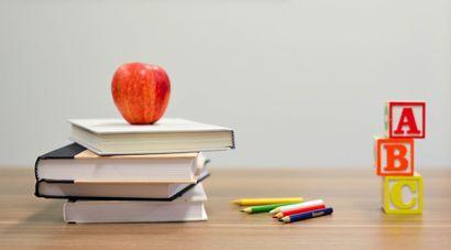 Info for schools_Pillar