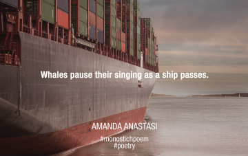 Whales pause their singing as a ship passes.