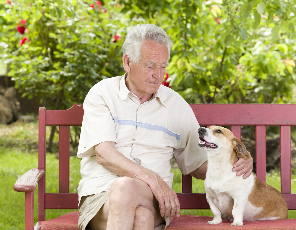 Man and dog sitting outside on a bench