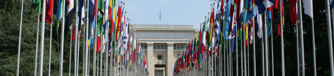 UN flags header