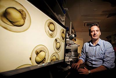 Professor Peter Currie