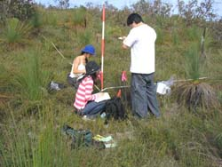 Students sampling in quadrat
