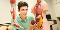 Student with two anatomy models
