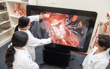 Biomed students explore 3D heart