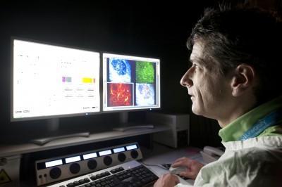 Associate Professor Michael Hickey