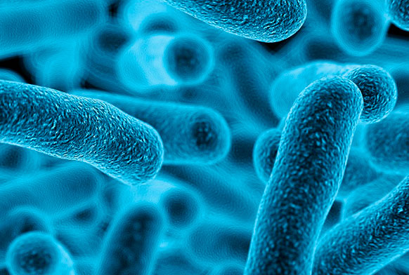 Tailored treatments: a new way to fight superbugs