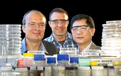 Professor Leone Spiccia, Dr Udo Bach and Professor Yi-Bing Cheng