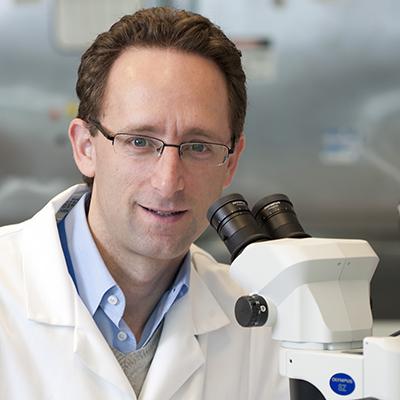 Professor Anton Peleg