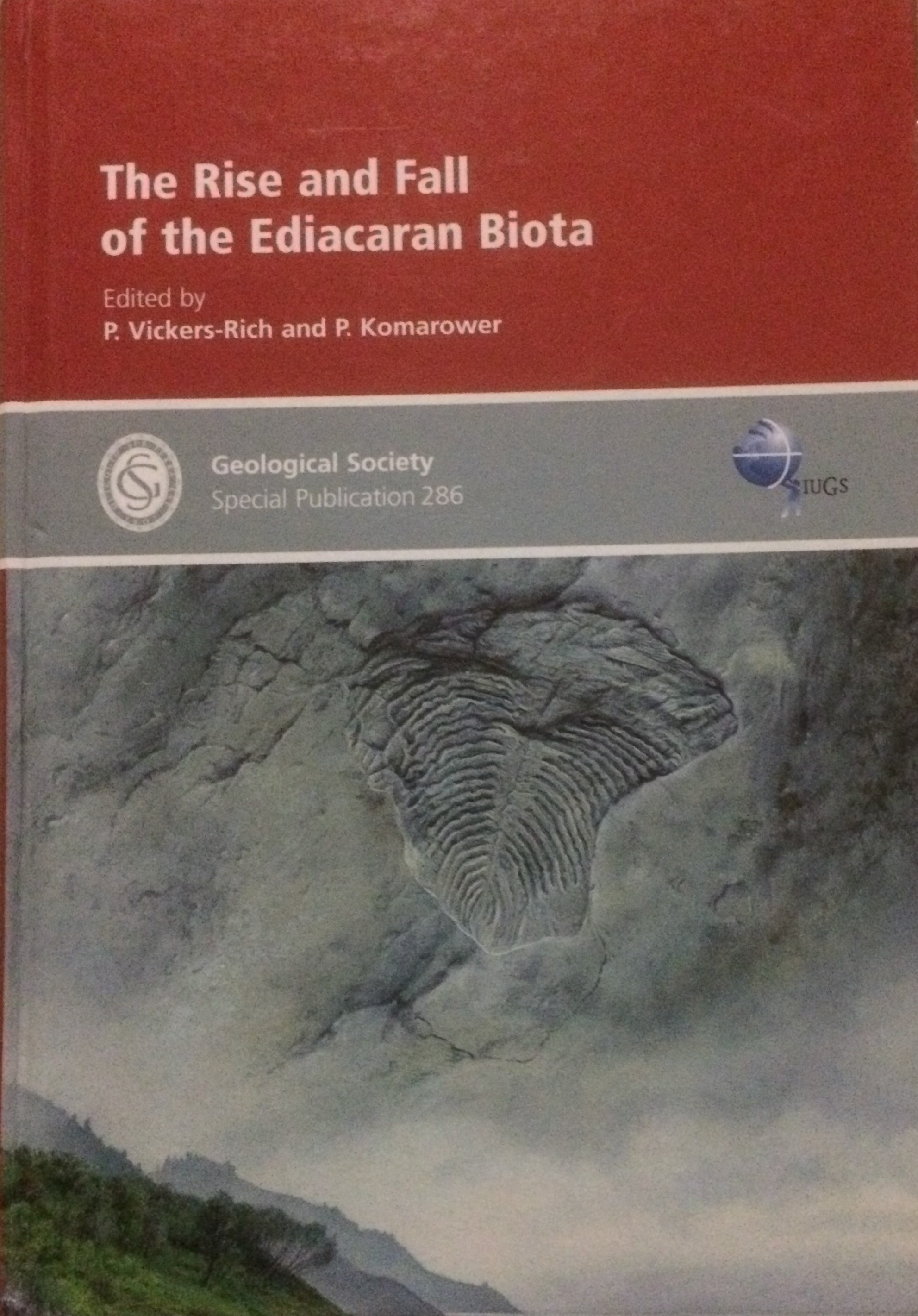 The Rise and Fall of the Ediacaran Biota Front