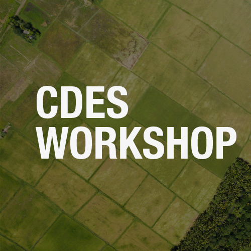Workshop exploring the economic and health sector response to the COVID-19 pande...