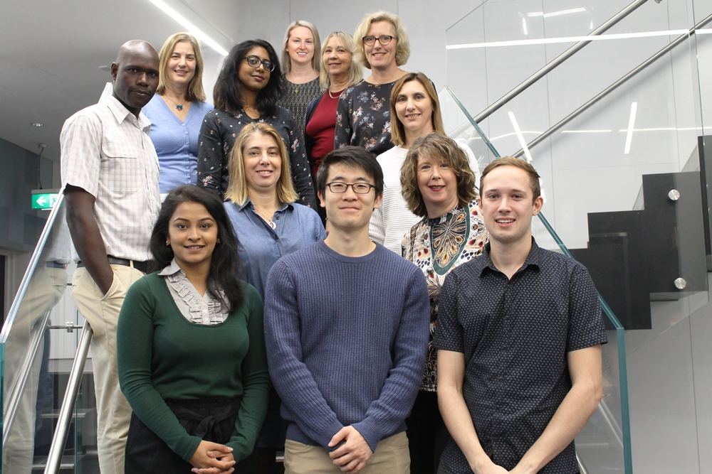 2019 Translational Public Health and Evaluation Division