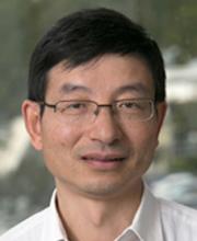 Huanting Wang