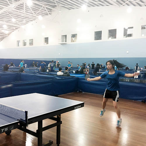 Rossa To playing table tennis