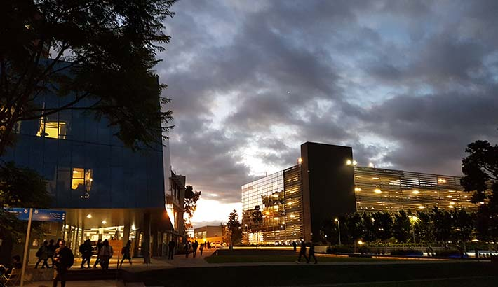 Caulfield campus at sunset