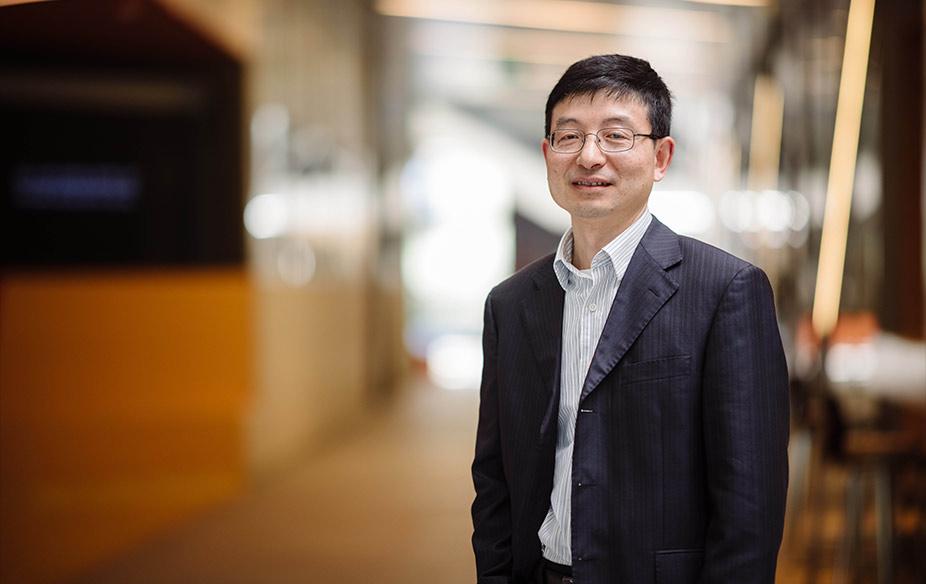 Professor Huanting Wang