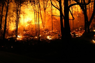 Monash researchers will examine a proposed link between chemicals used at the Country Fire Authority\\\\\\\'s Fiskville training base