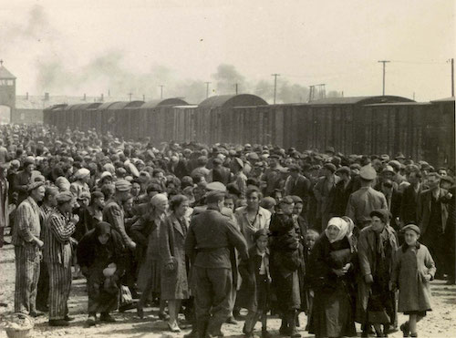 Many of the Boys were in Auschwitz concentration camp before arriving in Buchenwald. This photo shows the arrival of Jews from the Carpathian region and the selection process that was undertaken on their arrival at Auschwitz Birkenau. The SS divided prisoners into two groups – men one side, women and children the other.