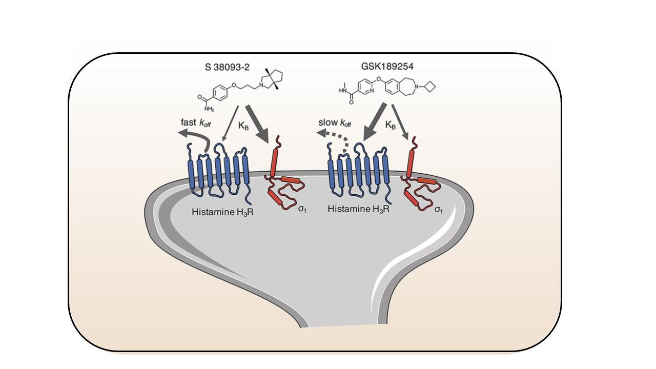 Histamine H3 antagonists
