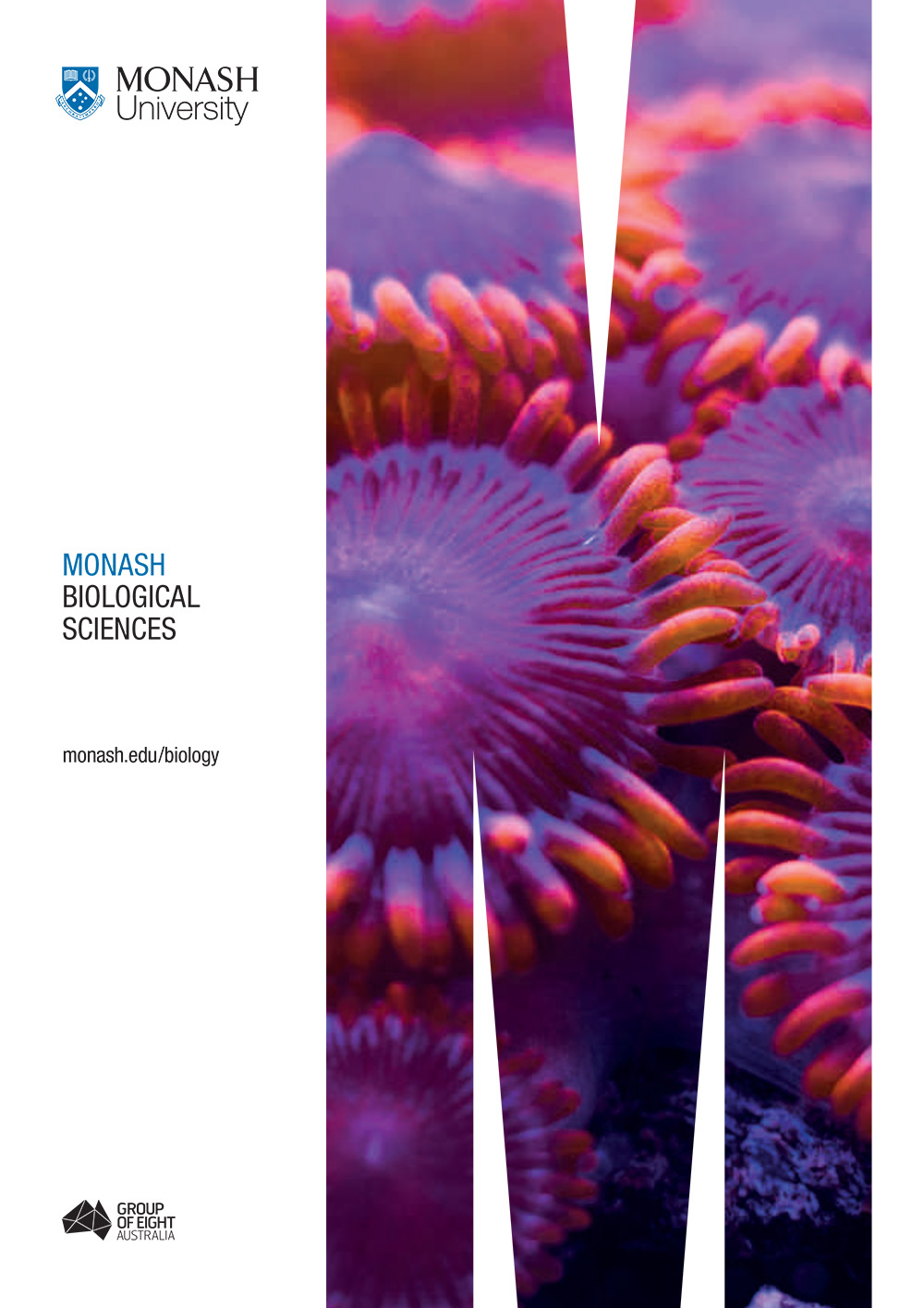 >Monash Biological Sciences Guide