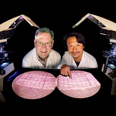 Professor John Bertram and Dr Go Kanzaki