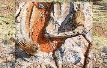 The Namibian Ediacaran biota