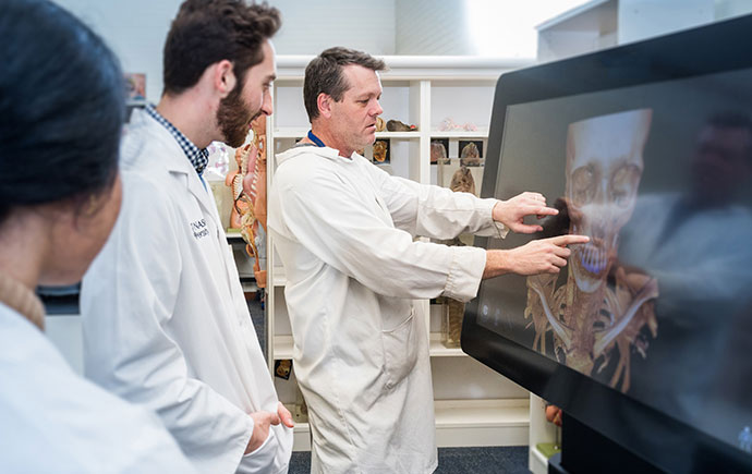 Anatomy demonstrator using 3d images on interactive monitor