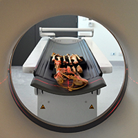 CT scanner brolga