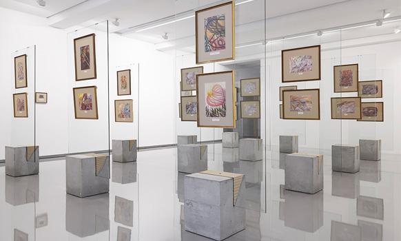 MUMA exhibitions