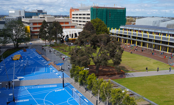Welcome to Monash Caulfield campus.