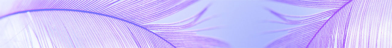 Soft feather purple
