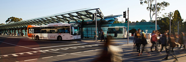 Monash Transport Interchange